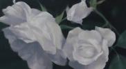 M-Flower カンバスに油彩 145×90㎝ 2017年