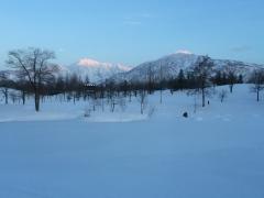 午後から快晴で、八海山と駒ヶ岳が輝いていました。