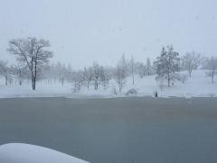 年末年始休館中……吹雪です。