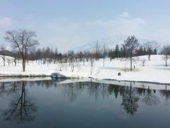 水が緩んで早春のよい日和になりました。