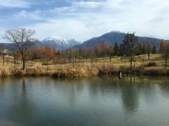 初冬の小春日、いい天気でした。