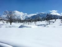 久しぶりの快晴。積雪2メートル。