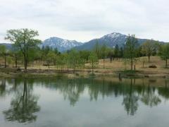 連休3日目の公園風景です。