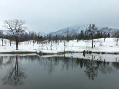 本日より「山本弘−旅情と山河」展が始まりました(写真5点)。