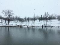 春分の日を過ぎたというのに雪です!