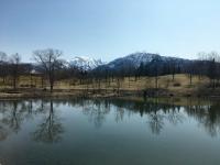 イケビから写真4点(3月17日〜26日)