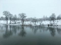 八色の森は雪景色です。