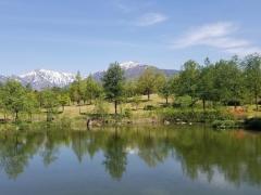 5月8日の八色の森公園です。