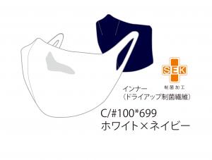 gse20mk2-100699
