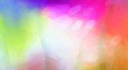 色奏-影映 17-3 綿布に水性アルキド樹脂絵具 162×162㎝