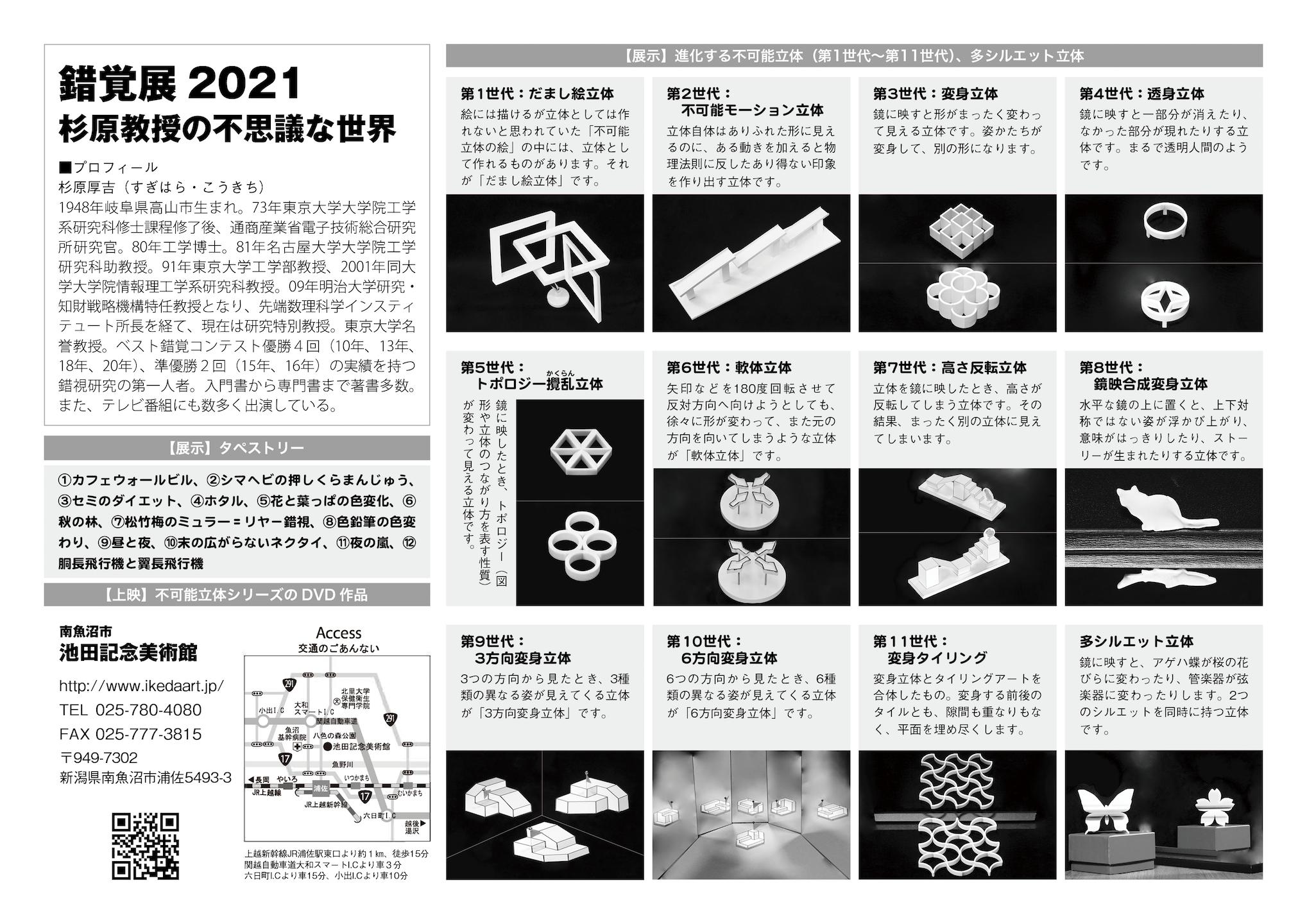 illusion2021-2