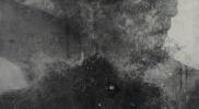 嬾惰棘女電気仕懸け No.2 パネル 硫酸カルシウム シルクスクリーン アクリル 岩絵具 オイルバー 蜜蝋 墨 1680×1150mm 2015年